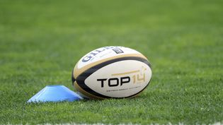 La Fédération française de rugby (FFR) a annoncé, lundi 17 mai, qu'elle autoriserait les personnes transgenres à participer aux compétitions officielles dès la saison prochaine. (FRANCK PENNANT / AFP)