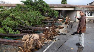 Un habitant de Saint-Martin-de-Londres (Hérault) constate les dégâts après le passage d'une tornade, dans la nuit du 23 au 24 novembre 2016. (MAXPPP)