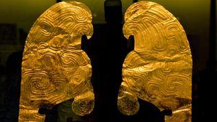 Profils de rapaces lors d'une expositon de reliques rendues par des collectionneurs français, à Lanzhou, capitale de la province de Gansu.  (STR / AFP)