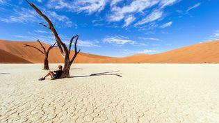 Dans le désert du Namib, en Namibie, le 2 mai 2014. (MATTES REN / HEMIS.FR / AFP)