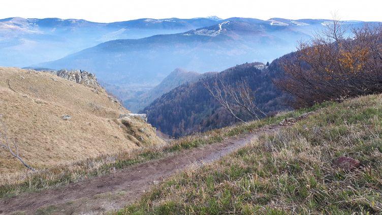 Paysage en haut du sommet du Hohneck dans le massif des Vosges. (NATHALIE BROUTIN / FRANCE-BLEU SUD LORRAINE)