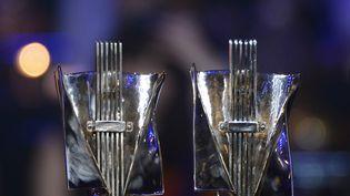 Les trophées des Victoires de la musique (illustration). (BERTRAND GUAY / AFP)
