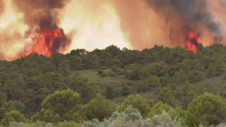 Aude : l'incendie est fixée mais toujours sous surveillance (FRANCE 3)
