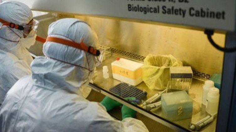 Des chercheurs équipés de combinaisons de protectionétudient unéchantillondu virus de la grippe aviaire H7N9 au centre provincial de contrôle des maladies et la prévention à Hangzhou, province du Zhejiang dans l'est de la Chine, le 17 Avril 2013. (AFP / XINHUA / Xu Yu )