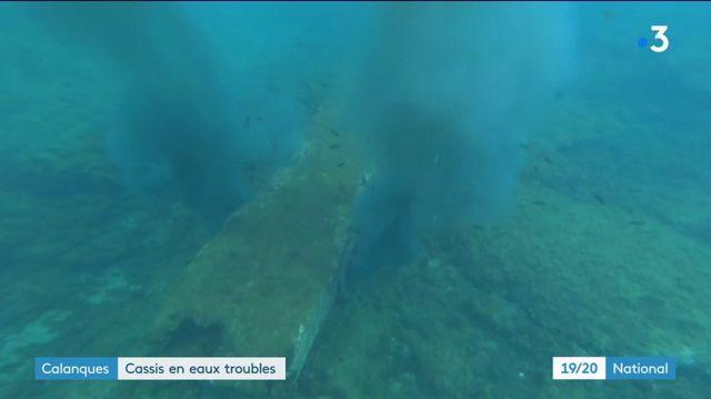 Calanques : les eaux troubles de Cassis