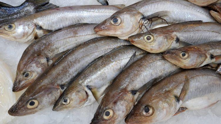 """Des merlans dans une grande surface. La population de cette espèce s'est """"effondrée"""" selon l'Ifremer. (MYCHELE DANIAU / AFP)"""