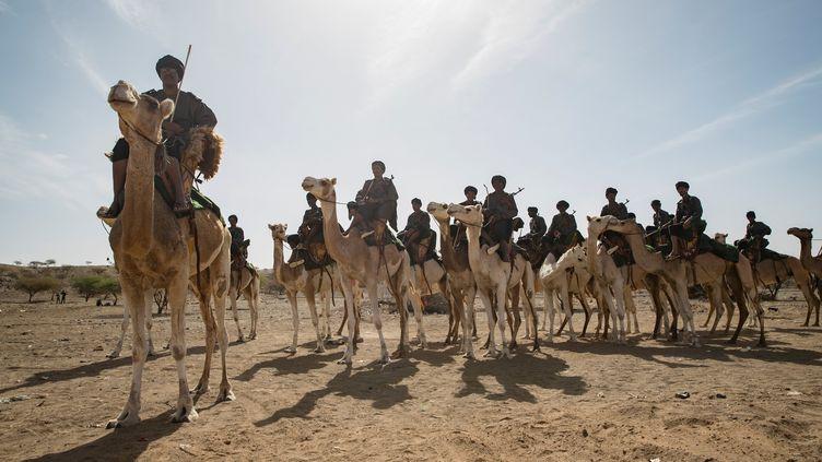 Les méharistesdu Groupement nomade de la garde nationale mauritanienne (THOMAS SAMSON / AFP)