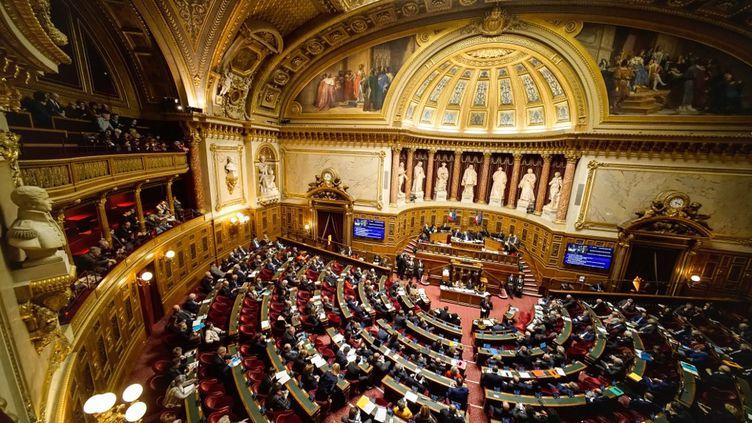L'hémicycle du Sénat, à Paris, le 5 février 2020. (DANIEL PIER / NURPHOTO / AFP)