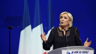 La présidente du FN Marine Le Pen, en meeting le 18 mars 2017 à Metz (Moselle). (JEAN CHRISTOPHE VERHAEGEN / AFP)