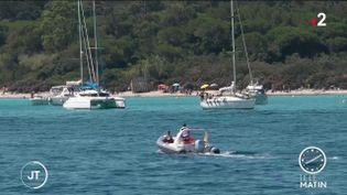 Pour limiter l'affluence des touristes, une jauge va être mise en place dès cet été sur l'île de Porquerolles (Var). (FRANCE 2)
