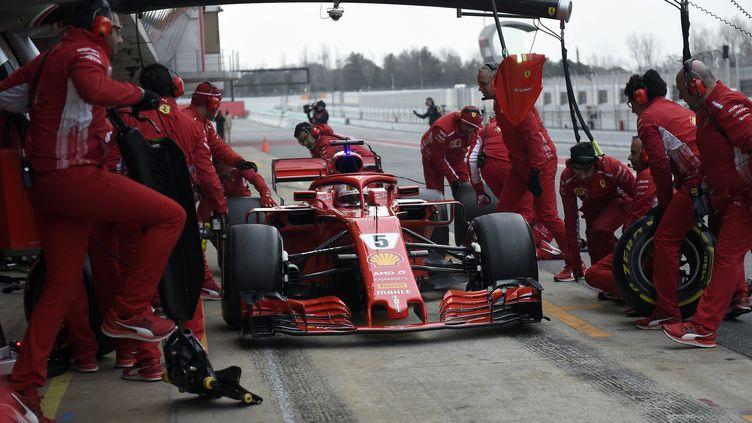 Sebastian Vettel dans les stands (JOSE JORDAN / AFP)