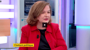 Nathalie Loiseau (FRANCEINFO)