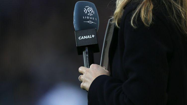 Une journaliste de Canal+ lors d'un match de Ligue 1 à Caen (Calvados), le 19 décembre 2015. (CHARLY TRIBALLEAU / AFP)