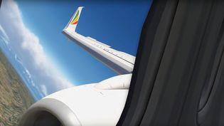 Capture d'écran d'une simulation du vol de l'appareil d'Ethiopian Airlines qui s'est écrasé en Ethiopie. (BULL BOSPHORUS / YOUTUBE)