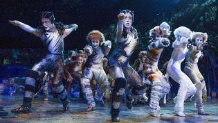 """""""Cats"""", la comédie musicale, au Palladium de Londres (10 décembre 2014)  (Alastaire Muir / REX / SIPA)"""