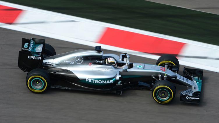 Lewis Hamilton (Mercedes) (EVGENY BIYATOV / RIA NOVOSTI)