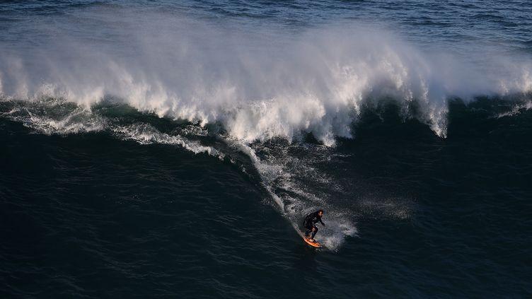 Le surfeur brésilien Rodrigo Koxa surfe une vague de Nazaré au Portugal, le 29 novembre 2014. (FRANCISCO LEONG / AFP)