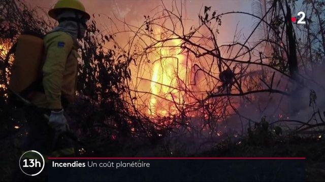 Environnement : des incendies aux quatre coins de la planète