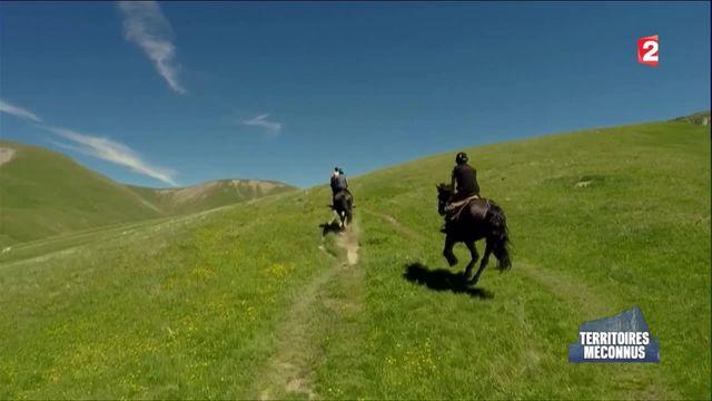 Le plateau d'Emparis, une steppe dans les Alpes