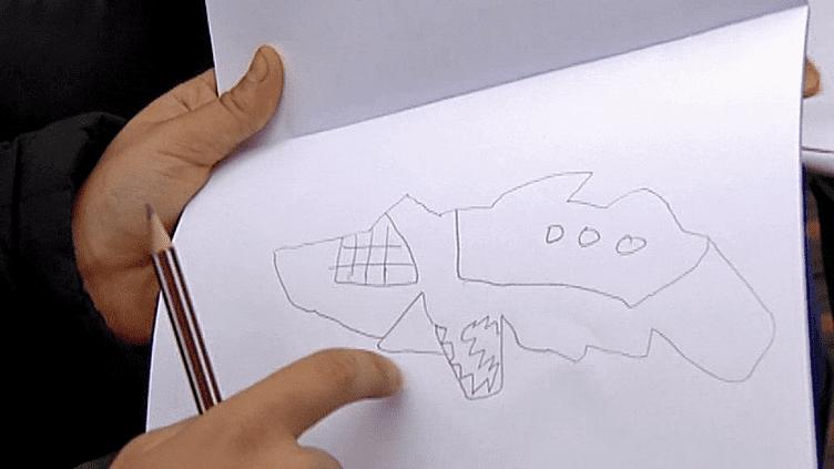 Requin, tortue ou ours blanc, les enfants donnent leur vision du musée des Confluences à Lyon  (Culturebox)