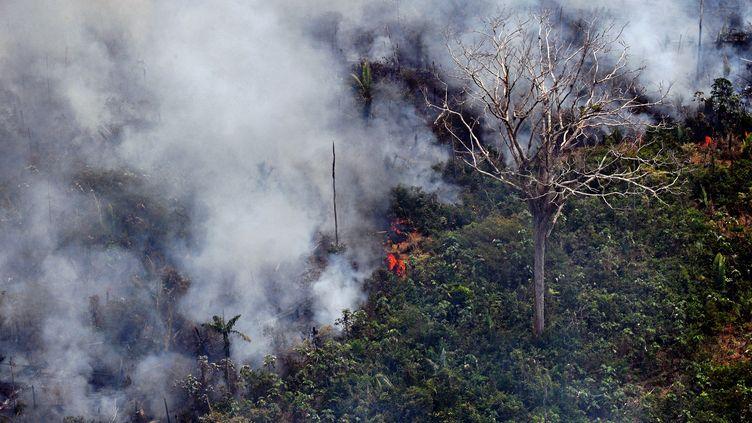 Un feu de forêt dans l'Etat de Rondonia, à environ 65 km de Porto Velho, le 23 août 2019. (CARL DE SOUZA / AFP)