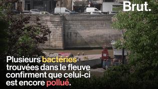 VIDEO. À Paris, l'eau de la Seine pourrait-elle être rouverte à la baignade ?  (BRUT)