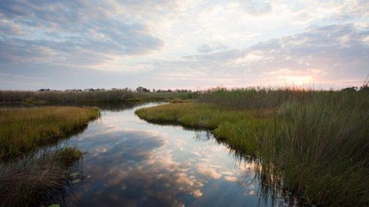 Le delta d'okavango, au Botswana, région très touristique où s'est produit l'accident. (Ryan Benyi / Image Source)
