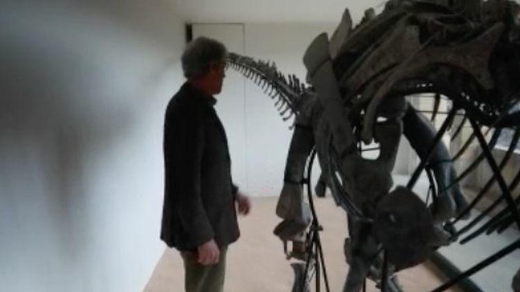 Il reste encore de nombreux fossiles et os de dinosaures à découvrir sur la planète. Après les musées et les chercheurs, les collectionneurs privés s'y intéressent de plus en plus. Chaque année, les ventes battent des records. (FRANCE 2)
