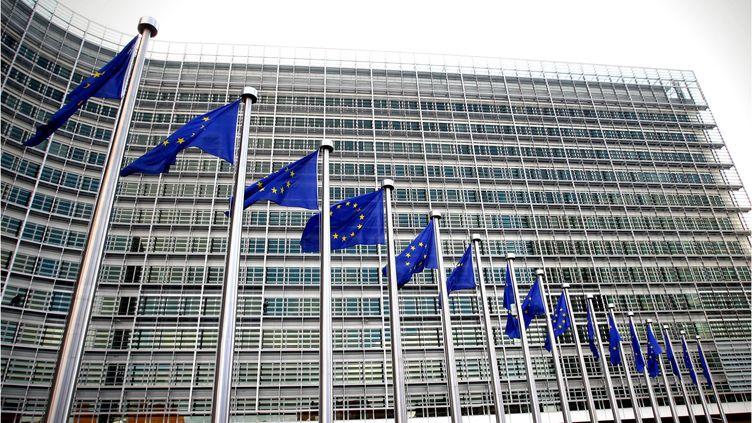 Devant la Commission européenne, à Bruxelles (Belgique), le 14 octobre 2008. (MAXPPP)