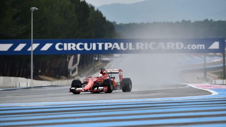 La Ferrari de Sébastian Vettel lors d'essais sur le circuit Paul Ricard, en janvier 2016. (MARC DE MATTIA / DPPI MEDIA / AFP)