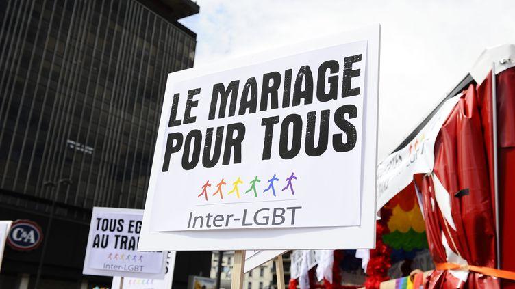 La Marche des fiertés, à Paris, le 25 juin 2011. (MAXPPP)