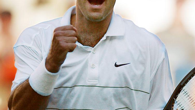 Pete Sampras (US Open 2002) (MATT CAMPBELL / AFP)