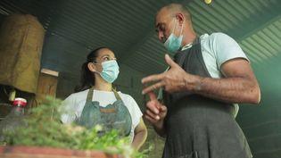 La Réunion : le chef Philippe Morel concocte un savoureux repas de fêtes (CAPTURE D'ÉCRAN FRANCE 3)