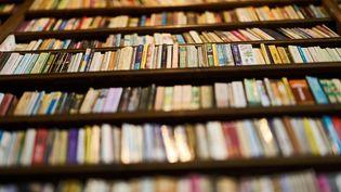Bibliothèque, photo d'illustration. (Illustration DR)