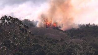 Des incendies toujours en cours en Corse (france 3)