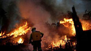 Un pompier tente de contrôler un incendie, le 11 août 2020 à Apui (Brésil). (UESLEI MARCELINO / REUTERS)