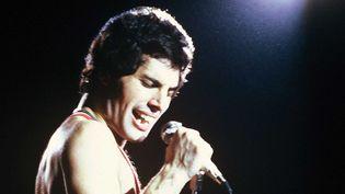 Freddie Mercury en concert à Paris en juin 1979.  (De Keerle/SIPA)