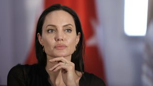Angelina Jolie, juin 2015, en Turquie  (AFP)