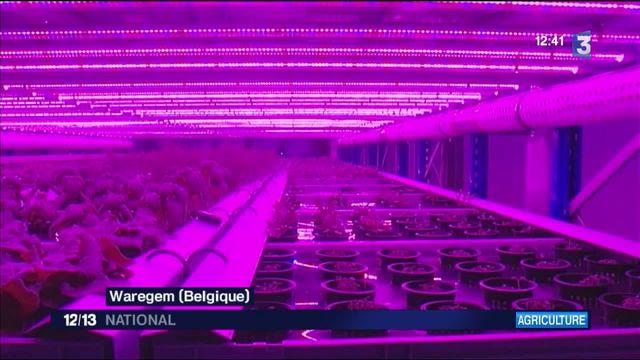 La ferme du futur en Belgique