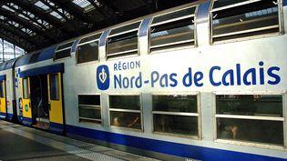 Quatre personnes, âgées d'une vingtaine d'années, ont été heurtées sur les voies vendredi 16 décembre 2017 par un TER à la sortie de Lille (Nord). (MAXPPP)