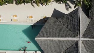 Tourisme : Zanzibar, unedestination paradisiaque loin du Covid-19 (France 2)