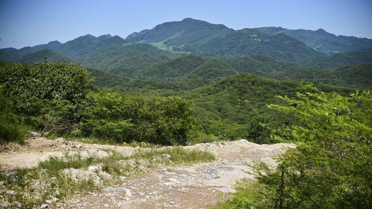 La chaîne de montagnes mexicaine de la Sierra Madre Occidental, le bastion du cartel de la drogue Sinaloa, près d'El Limon, dans l'Etat de Durango, au Mexique, le 18 octobre 2015. (RONALDO SCHEMIDT / AFP)