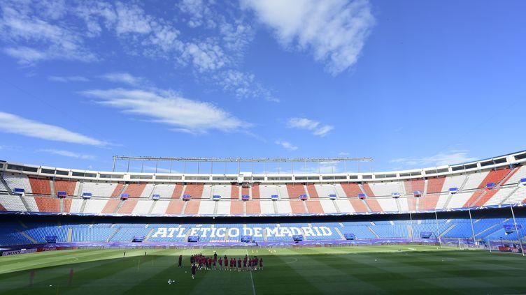 Les joueurs de l'Atletico Madrid sur la pelouse du Vicente Calderon (JAVIER SORIANO / AFP)