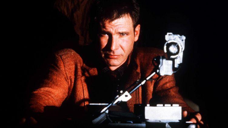 "Harrison Ford dans ""Blade Runner"", de Ridley Scott (1982)  (Kobal / The Picture Desk / AFP)"