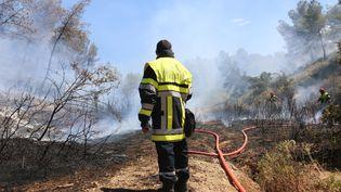 Fabrice Carboni sur les lieux d'une reprise de feu à la Gacharelle, à Martigues (Bouches-du-Rhône), le vendredi 26 juillet. (VALENTINE PASQUESOONE/FRANCEINFO)