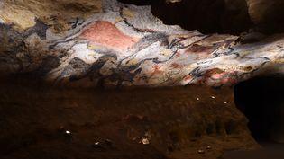 La réplique de la grotte originale de Lascaux, le 15 décembre 2016. (MEHDI FEDOUACH / AFP)