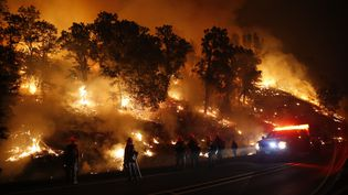 "les pompiers combattent le ""Valley Fire"", comme ils l'ont baptisé, le 13 septembre 2015 près de Middletown en Californie. (STEPHEN LAM / GETTY IMAGES NORTH AMERICA)"