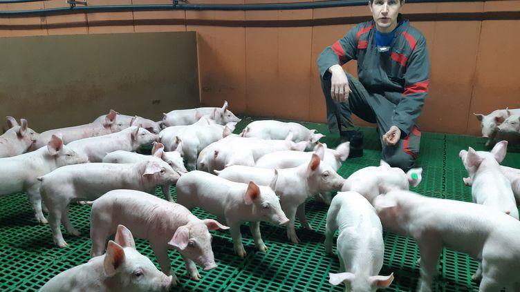 Jérémy Labbé, jeune éleveur de porcs à Plurien (Côtes-d'Armor) (GUILLAUME  GAVEN / RADIO FRANCE)