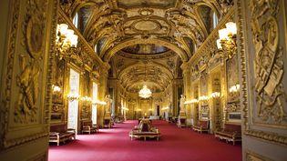 La salle des conférences du Sénat, à Paris. (ESCUDERO PATRICK / HEMIS.FR / AFP)