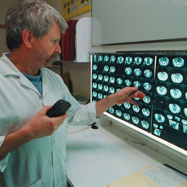 """Le mésentère pourrait désormais apparaître dans la liste des organes du corps humain inscrite dans labible de l'anatomie humaine, le """"Gray's Anatomy"""". (MAXPPP)"""